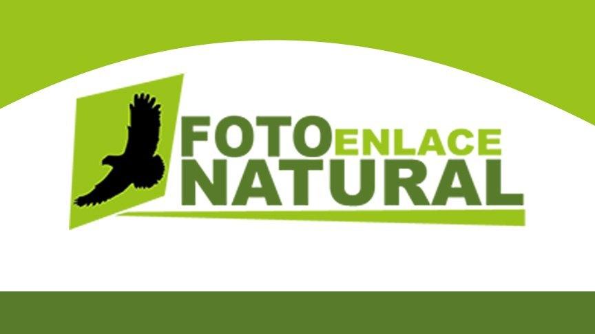 Picture of Web de Enlaces